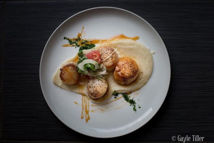 Photographs of Gourmet Food
